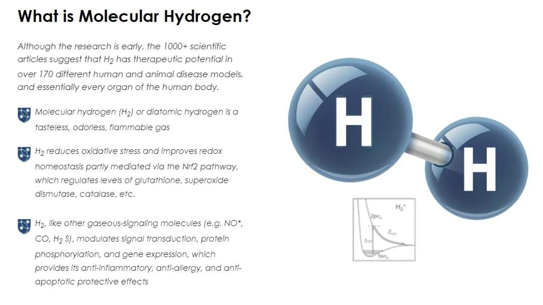 molecularhydrogeninstitute