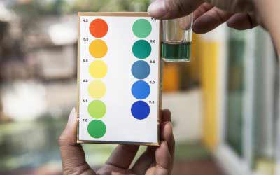 THE PH SPECTRUM:  Understanding pH